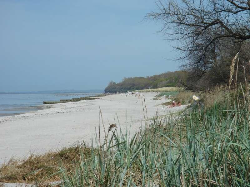 Strand Am Schwarzen Busch Bildergalerie Insel Poel
